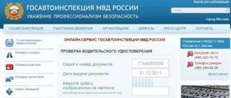 Как проверить водительские права онлайн по базе ГИБДД